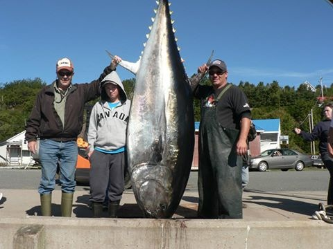 Hooked On Bluefin Tuna Charters