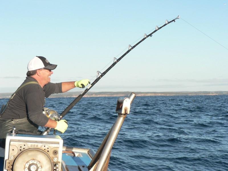 Hooked On Bluefin Tuna Charters