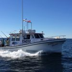 NS Tuna Charters: Blazing Bluefin Tuna Charters